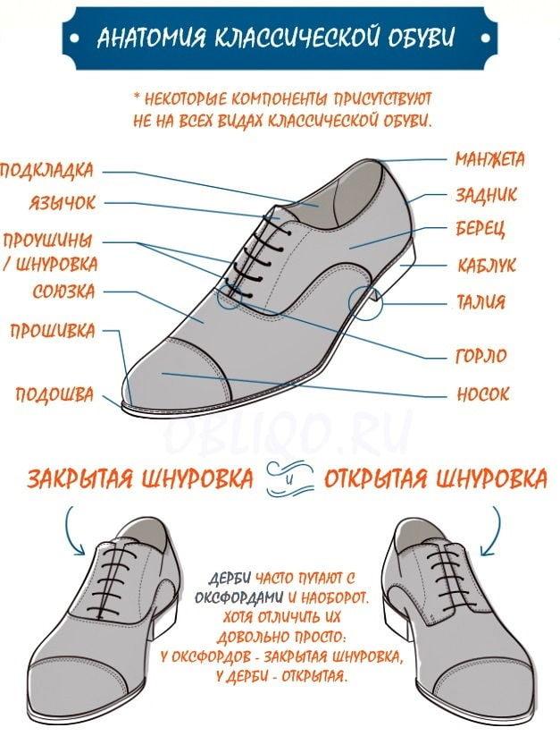 Анатомия классической обуви