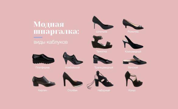 Виды каблуков женской обуви